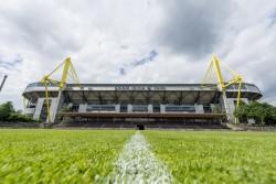 Beim BVB werden bald auch Fußballerinnen über den Rasen laufen. © BVB