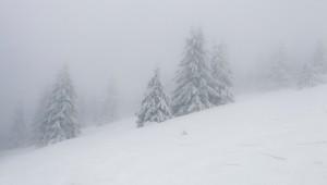 Dichter Nebel verhindert das Rennen der Frauen bei der Ski-WM (Symbolbild). © pixabay